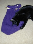 Felted_tote_progress_with_toby_71105