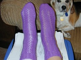 Special_socks_on_my_tootsies_982005
