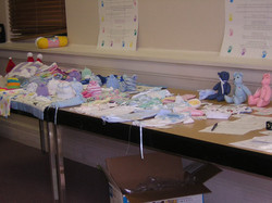 The_preemie_project_table_1_2