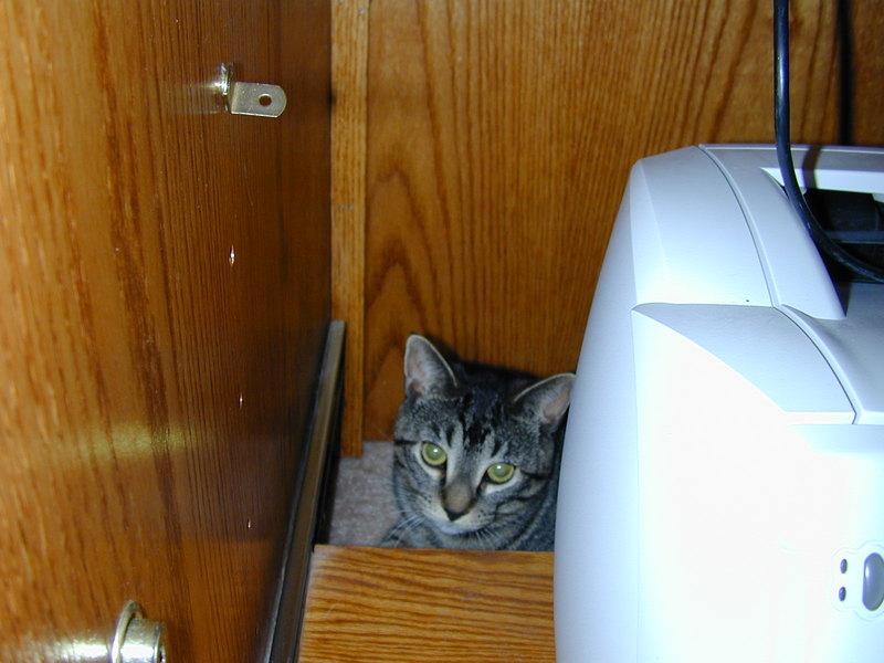 M_hiding
